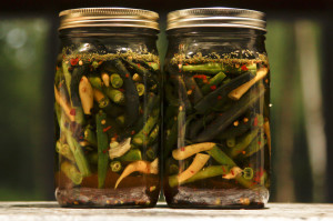 Lacto-fermented Dilly Beans